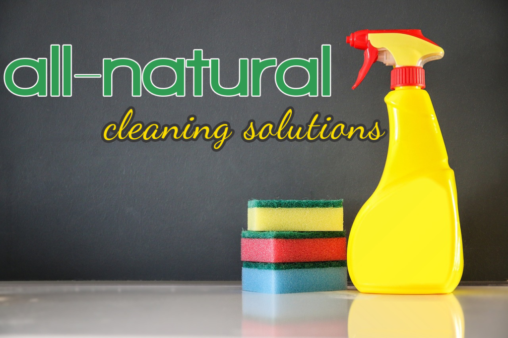 all-natural-cleaning-solutions blog photo