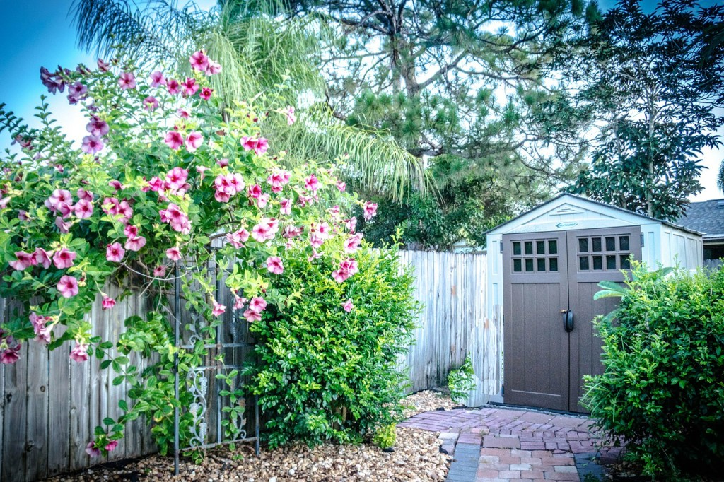 Plant at the right time—Landscaping Tips